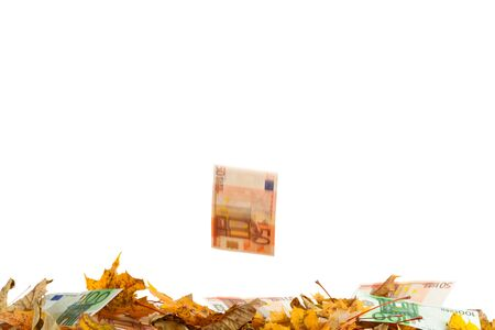Bank notes as a windfall fruit Stock Photo - 15329738