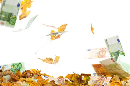 leaves and Bank notes fall to the ground Stock Photo - 15329773