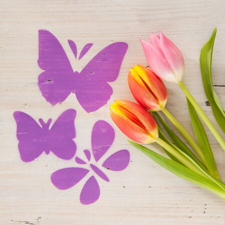 mariposas volando: Mariposas volando sobre un prado de tulipanes Foto de archivo