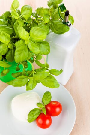 consciously: Mozzarella with tomatoes, basil and olive oil Stock Photo