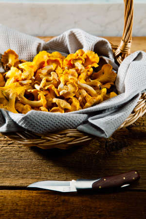 Basket of chanterelles on a rustic wooden table