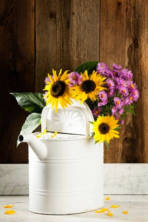 Sunflowers and asters in a watering can