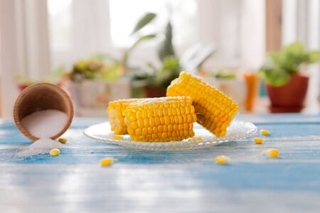 delicious boiled corn on a plate next to an inverted jar of salt on the background of a window with flowers. 版權商用圖片