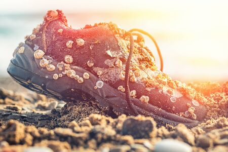 Concept of environmental protection and pollution. An old Shoe covered with shells lies on the seashore. Close up. In the background, the sea. Light. Фото со стока