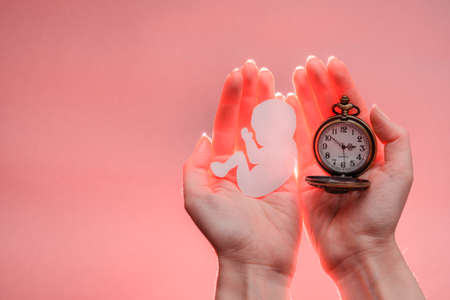 Paper embryo silhouette and clock in woman hands with light. Light coral background with copy space. Hands are on the right side. Soft focus.