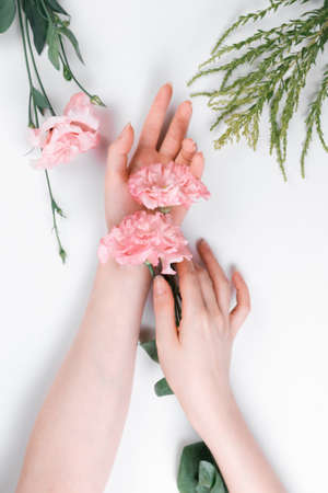 Elegant female hands hold a rosebud eustoma in the palm. White background. Flat lay. The concept of Floristics and tenderness.