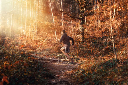 Concept of sport and active lifestyle. A young man is Jogging in the autumn forest. Sunset. Back view. Reklamní fotografie