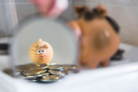 the concept of increasing the accumulation of funds. in the magnifying glass is a small toy pig and a scattering of coins on the gas stove.