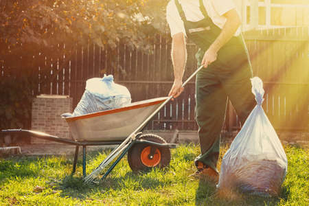Gardener cleans leaves in the yard. Beside him is a cart with compost. The sun shines brightly. Imagens