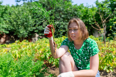 Caucasian young woman holding a small carrot in disbelief.Vegetation in the background.Concept of harvesting and gardening.