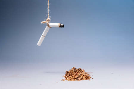 World Tobacco Control Day. An extinguished cigarette hangs over a pile of tobacco on a blue background. Copy space. The concept of nicotine addiction and the harm of smoking. 版權商用圖片