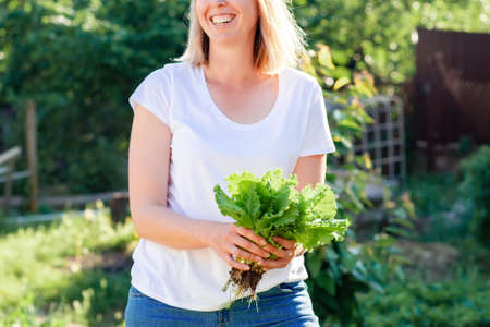 Fresh and organic food. Close up portrait of a smiling caucasian woman holding a bunch of freshly picked lettuce. The concept of harvesting and gardening.
