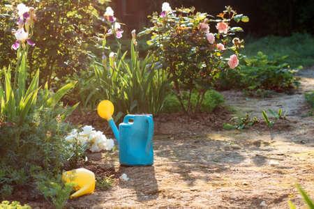 Garden plastic watering can standing in the garden. Nobody. Sunlight. Gardening. 版權商用圖片