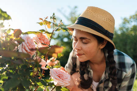 Portrait of pretty woman in a straw hat sitting in the garden, sniffing the scent of roses from a bush. Summer gardening concept.