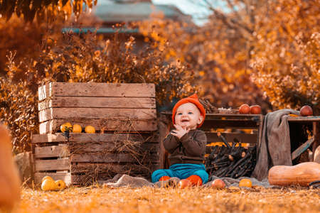 Halloween. A cheerful boy in a dwarf costume sits on the grass surrounded by pumpkins and agricultural decor. Standard-Bild