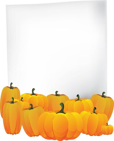 Blank sheet of paper and a pile of ripe pumpkins Stock Vector - 10999870