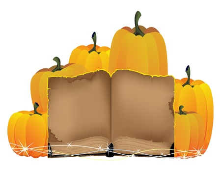 Heap of pumpkins and the old book on a white background Stock Vector - 10999883