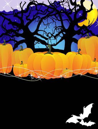 dense: Ripe Halloween pumpkins in a dense forest Illustration