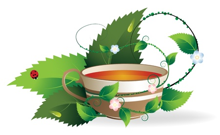 mint leaves: Vegetative shoots encircle the cup of herbal tea