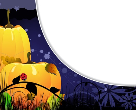 Two bright ripe pumpkins under the night sky Vector