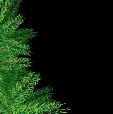 evergreen: Christmas tree on a black background  Abstract Christmas card