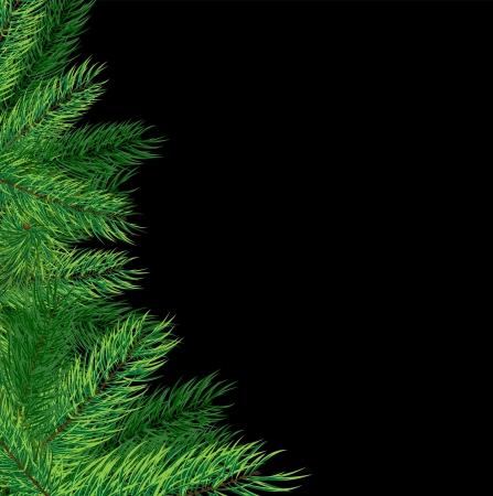 evergreen branch: �rbol de navidad en un fondo negro tarjeta abstracto de la Navidad