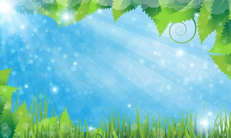 lush foliage: Summer solar rural landscape with a grass and lush foliage Illustration