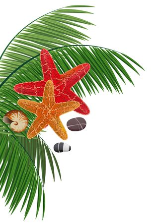 pebble: Palm branches, starfishes, pebble and cockleshell on a white background Illustration