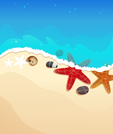 Sandy coast and foaming waves with starfishes, stones and cockleshell Illustration