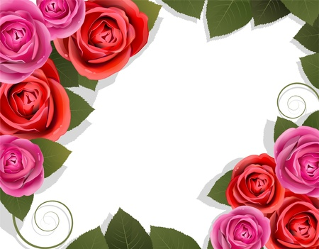 Roses and leaves on a white background. Abstract floral frame Illustration