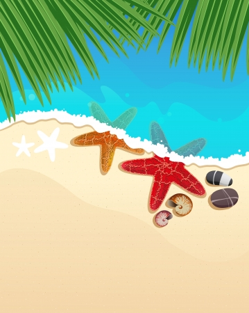 foaming: Sandy coast and foaming waves with palm branches, starfishes and cockleshell Illustration
