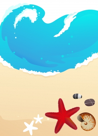 Sandy coast and foaming waves with starfish, stones and cockleshell Vector