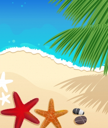 tranquil scene: Sandy coast and foaming waves with starfishes, stones and palm branches Illustration