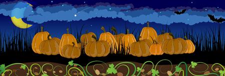 tall grass: Pile of pumpkins in the tall grass. Halloween night scene Illustration