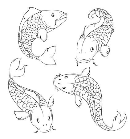 escamas de peces: Carpas bocetos sobre un fondo blanco
