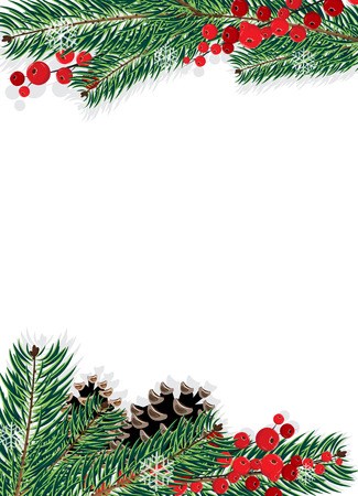 Spruce branches with cones and red berries on a white background