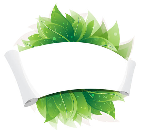 Green leaves with paper scroll on white background Vector