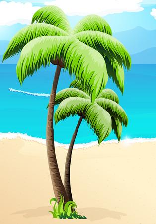 lagoon: Two palm trees on a sandy beach against the ocean