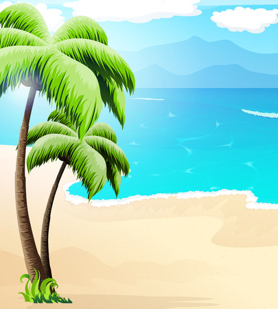 tropical beach panoramic: Sandy coast with palm trees and tropical vegetation.