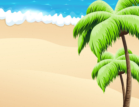 tropical beach panoramic: Sandy coast with palm trees