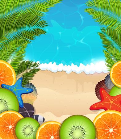 citrus tree: Naranja y el kiwi rebanadas con estrellas de mar, concha de berberecho y piedras en un fondo del mar tropical
