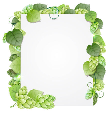 Green hops branch on white background. Abstract floral frame Vettoriali