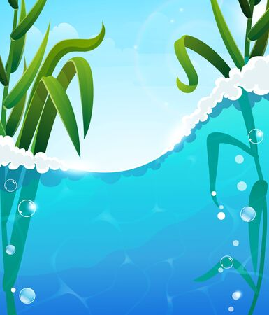 foaming: Foaming  river wave and aquatic plants. Air bubbles in the clear water. Blue sky with transparent clouds In the background