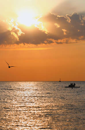 The sea lighted up by a sunset, a seagull and a ship photo