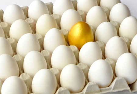 Golden egg among white hen eggs in carton pack  photo
