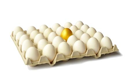 Golden egg among white hen eggs in carton pack, isolated on white background  photo