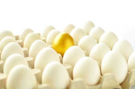 Golden egg among white hen eggs in carton pack, isolated on white background  photo