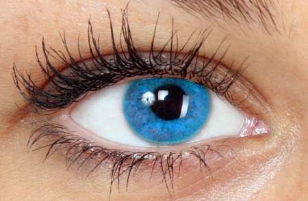 blue eye Stock Photo - 574254