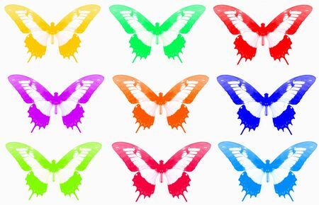 delightful: butterfly collection - delightful butterfly with its vibrant colors  Stock Photo
