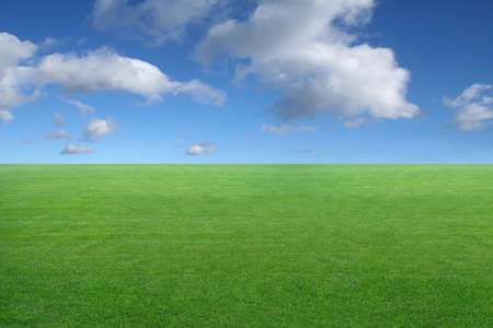 new peaceful desktop wallpaper - green grass on blue sky background Stock Photo